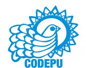 2codepu
